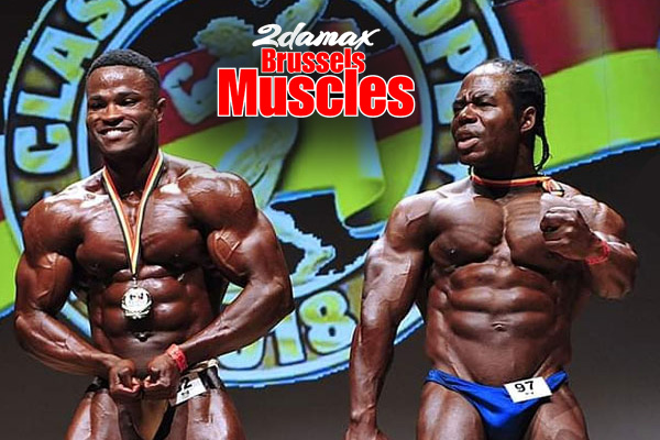 Brussels Muscles
