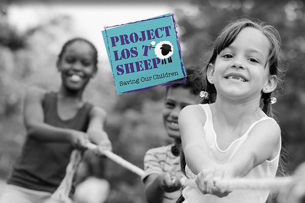 Project lost sheep